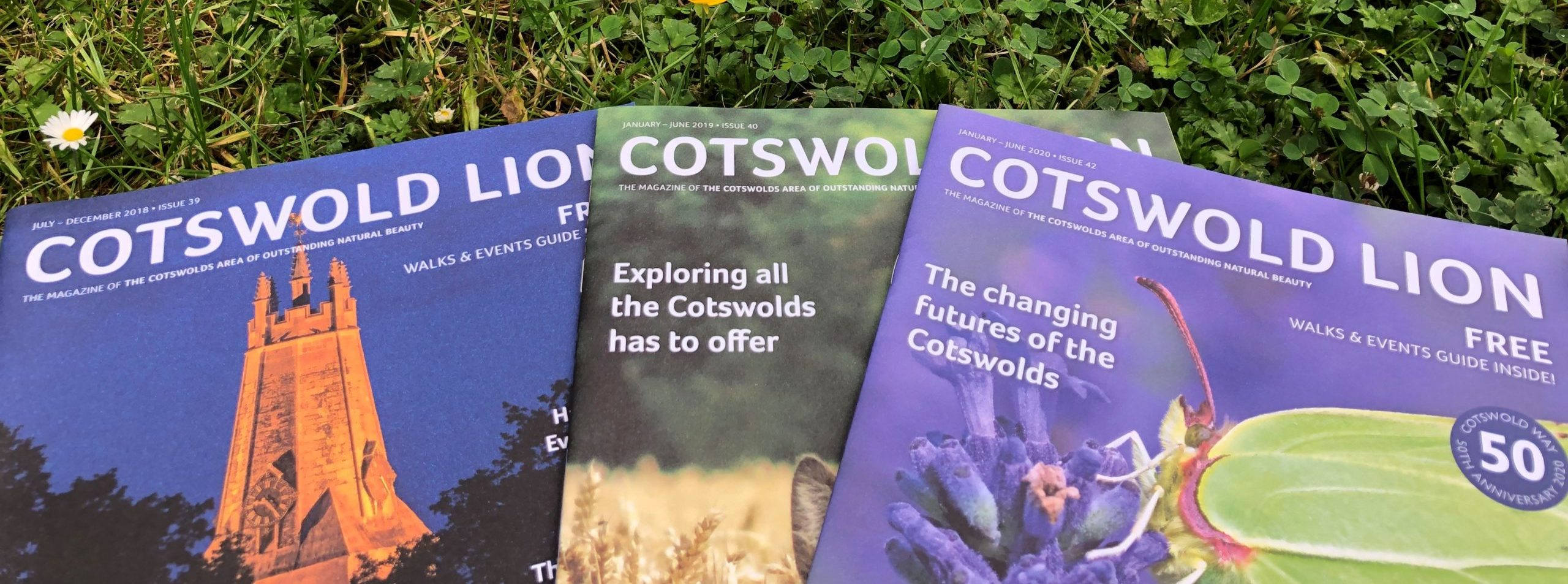 Cotswold Lion front covers