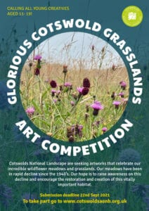 Glorious Cotswold Grasslands art competition 2021 poster