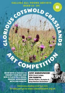 Poster to advertise the 2021 Glorious Cotswold Grasslands art competition for 11 - 19 year olds